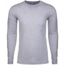 Textiel Heren T-shirts met lange mouwen Next Level NX3601 Grijze Heide
