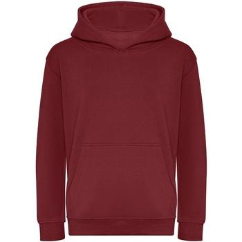 Textiel Jongens Sweaters / Sweatshirts Awdis JH201B Bourgondië