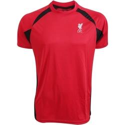 Textiel T-shirts korte mouwen Liverpool Fc  Rood/zwart