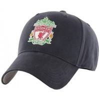 Accessoires Pet Liverpool Fc  Marine