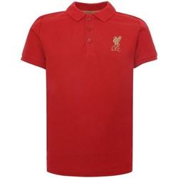 Textiel Kinderen Polo's korte mouwen Liverpool Fc  Rood