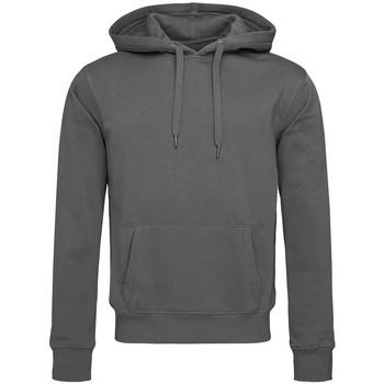Textiel Heren Sweaters / Sweatshirts Stedman  Leisteengrijs
