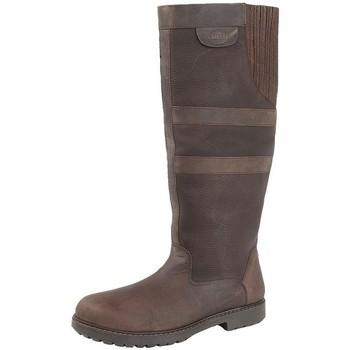 Schoenen Dames Laarzen Woodland  Donkerbruin