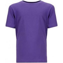 Textiel Kinderen T-shirts korte mouwen Next Level NX3310 Paars