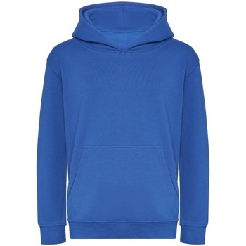 Textiel Kinderen Sweaters / Sweatshirts Awdis J201J Koningsblauw
