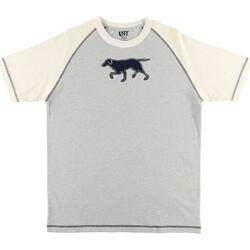 Textiel Heren Pyjama's / nachthemden Lazyone  Blauw/Wit