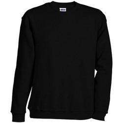 Textiel Sweaters / Sweatshirts James And Nicholson  Zwart