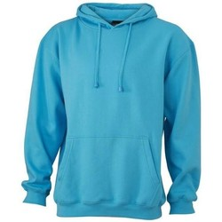 Textiel Sweaters / Sweatshirts James And Nicholson  Hemelsblauw