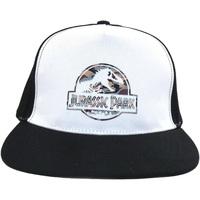 Accessoires Pet Jurassic Park  Wit