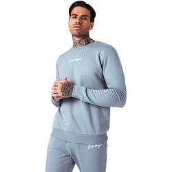 Textiel Heren Sweaters / Sweatshirts Hype  Leisteengrijs