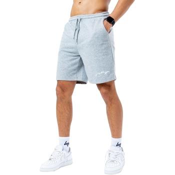 Textiel Heren Korte broeken / Bermuda's Hype  Grijs