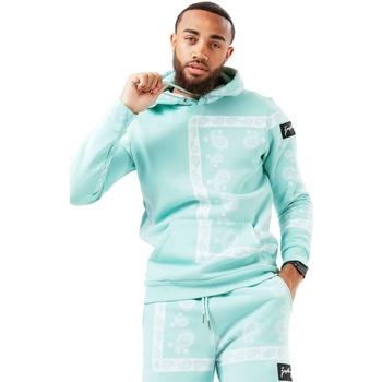 Textiel Heren Sweaters / Sweatshirts Hype  Teal