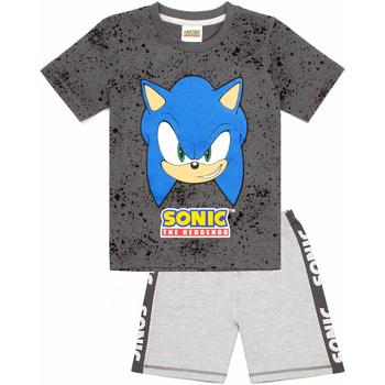 Textiel Jongens Pyjama's / nachthemden Sonic The Hedgehog  Grijs