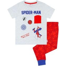 Textiel Jongens Pyjama's / nachthemden Spiderman  Grijs/Rood