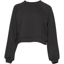 Textiel Dames Sweaters / Sweatshirts Bella + Canvas BE134 Donkergrijs