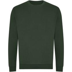 Textiel Sweaters / Sweatshirts Awdis JH230 Fles groen