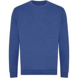 Textiel Sweaters / Sweatshirts Awdis JH230 Koningsblauw