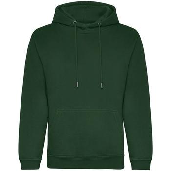Textiel Heren Sweaters / Sweatshirts Awdis JH201 Fles groen