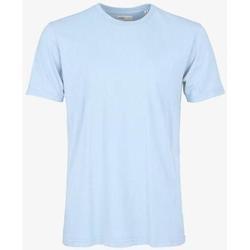 Textiel T-shirts korte mouwen Colorful Standard T-shirt  Polar Blue bleu pâle