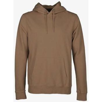 Textiel Sweaters / Sweatshirts Colorful Standard Sweatshirt à capuche  Sahara Camel marron clair