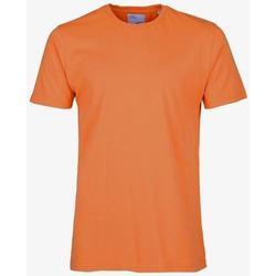 Textiel T-shirts korte mouwen Colorful Standard T-shirt  Burned Orange orange