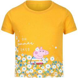 Textiel Dames T-shirts korte mouwen Regatta  Glimlicht geel
