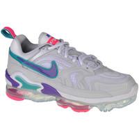 Schoenen Dames Lage sneakers Nike Wmns Air Vapormax Evo Blanc