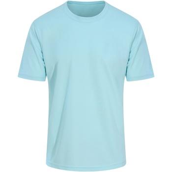 Textiel Heren T-shirts korte mouwen Awdis JC001 Munt