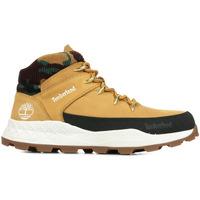 Schoenen Heren Hoge sneakers Timberland Brooklyn Mid Hiker Bruin