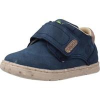 Schoenen Jongens Laarzen Chicco GAPPER Blauw