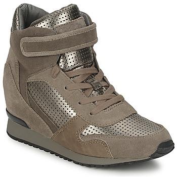 Schoenen Dames Hoge sneakers Ash DRUM Bruin / Goud