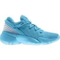 Schoenen Kinderen Basketbal adidas Originals  Blauw