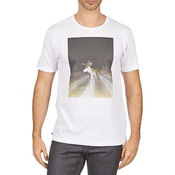Textiel Heren T-shirts korte mouwen Kulte BALTHAZAR PLEIN PHARE 101931 BLANC Wit