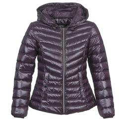 Textiel Dames Dons gevoerde jassen Mexx MX3000550 Aubergine