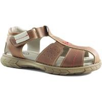 Schoenen Kinderen Sandalen / Open schoenen Gorila BIARRTIZ KING MARRON