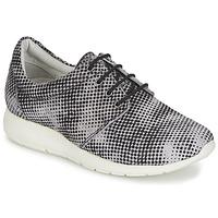 Schoenen Dames Lage sneakers Maruti WING Bruin