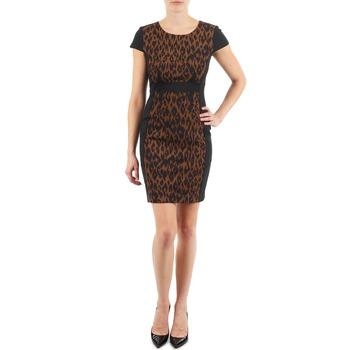 Textiel Dames Korte jurken Manoukian EMMA Zwart / Luipaard