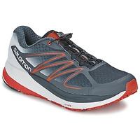 Schoenen Heren Running / trail Salomon SENSE PROPULSE Grijs / Rood