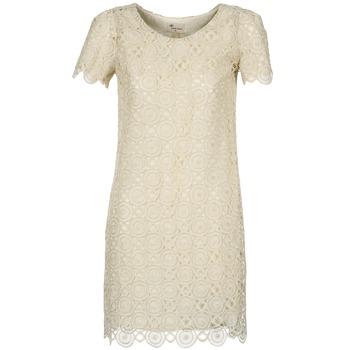 Textiel Dames Korte jurken Stella Forest ARO051 Ecru / Goud