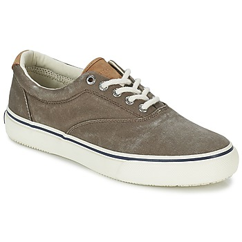 Schoenen Heren Lage sneakers Sperry Top-Sider STRIPER CVO Chocolat