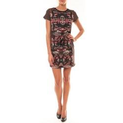 Textiel Dames Korte jurken Custo Barcelona Robe Laize Licorice marron Bruin