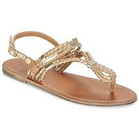 Schoenen Dames Sandalen / Open schoenen Pepe jeans JANE WOVEN METALLIC Bruin