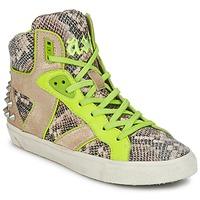Schoenen Dames Hoge sneakers Ash SONIC Slang / Geel