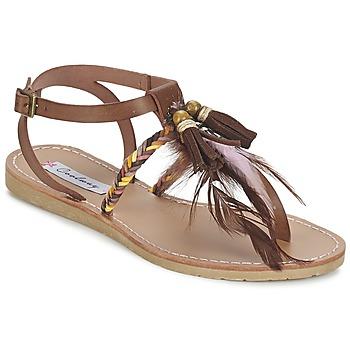 Schoenen Dames Sandalen / Open schoenen Coolway MELROSE Bruin