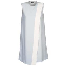 Textiel Dames Korte jurken Joseph SOL Grijs / Wit