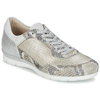 Schoenen Dames Lage sneakers Mjus FORCE Slang / Zilver