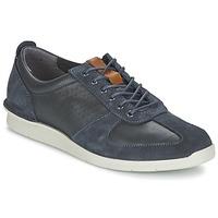 Schoenen Heren Lage sneakers Clarks POLYSPORT RUN Blauw