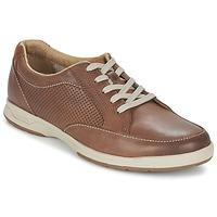 Schoenen Heren Lage sneakers Clarks STAFFORD PARK5 Bruin