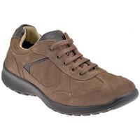 Schoenen Heren Lage sneakers Lumberjack