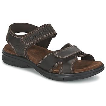 Schoenen Heren Sandalen / Open schoenen Panama Jack SANDERS Bruin